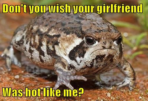 animals toad girlfriend funny captions - 8532853504