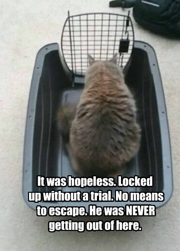 It was hopeless. Locked  up without a trial. No means  to escape. He was NEVER getting out of here.
