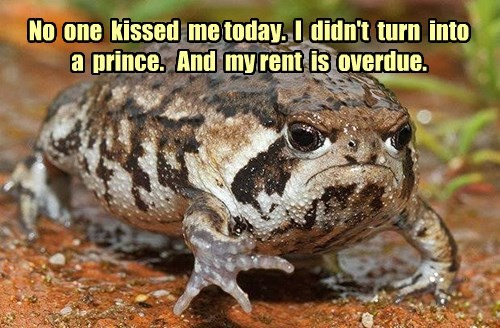 depressing toad funny - 8533453056