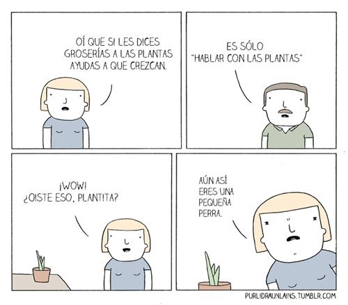 hablarle a las plantas