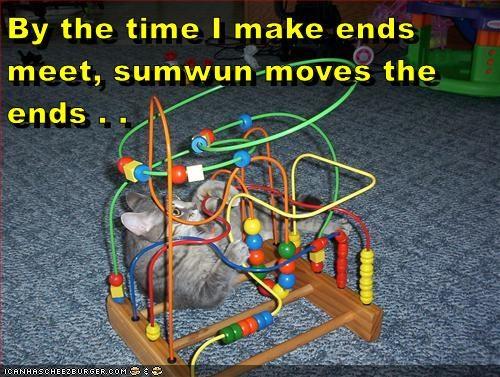 animals cat frustration toys captions - 8533939200