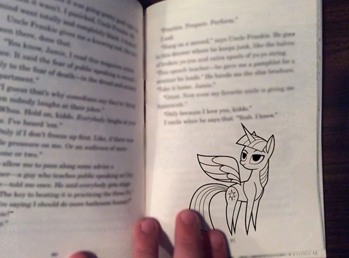 IRL,twilight sparkle,book