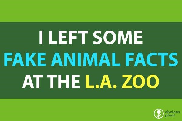 funny fake animal facts