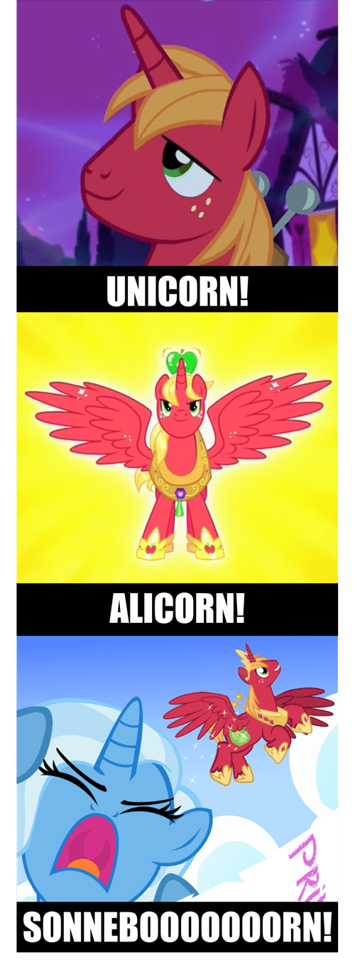 alicorn Fan Art big mac - 8535451392