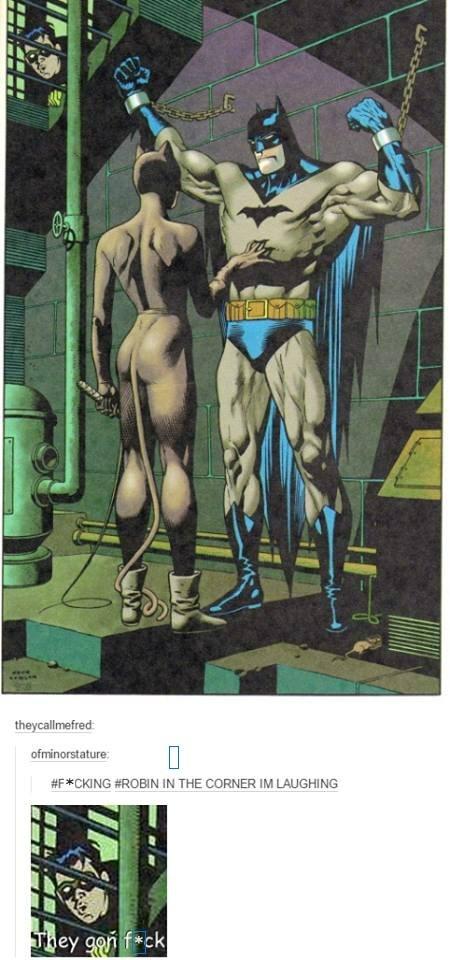 superheroes-batman-dc-robin-creeper-peeping-at-catwoman-memes