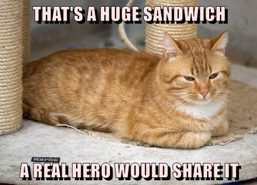 THAT'S A HUGE SANDWICH  A REAL HERO WOULD SHARE IT