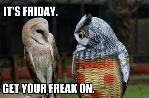 IT'S FRIDAY. GET YOUR FREAK ON. OLD MOTHER TUCKER
