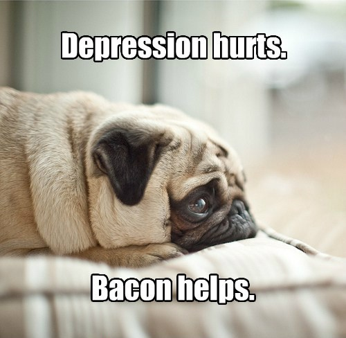 dogs,depression,caption,bacon