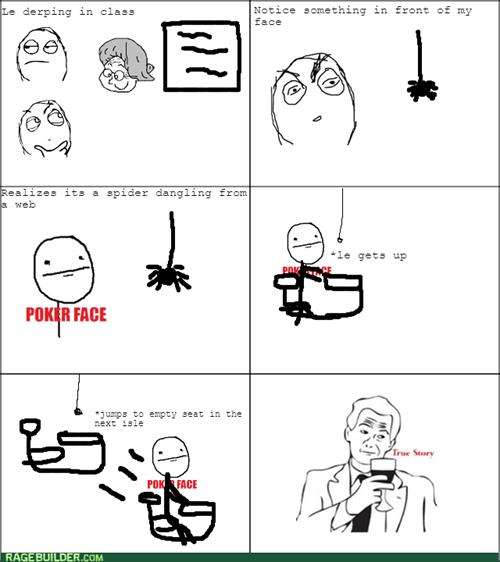 classroom,spider