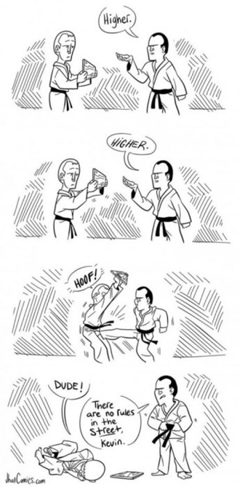 funny-web-comics-the-rules-of-being-a-street-fighter