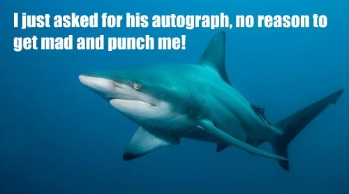 I just asked for his autograph, no reason to get mad and punch me!