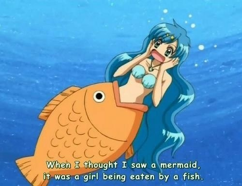 mermaids wtf fish - 8541045504