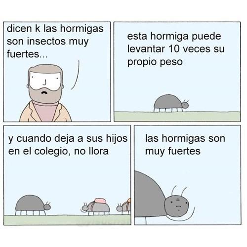 hormiga muy fuerte