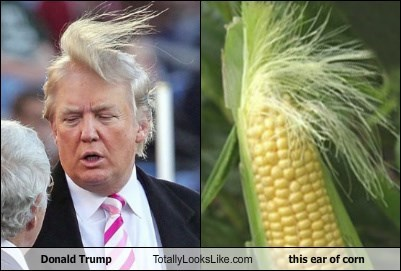 donald trump,totally looks like