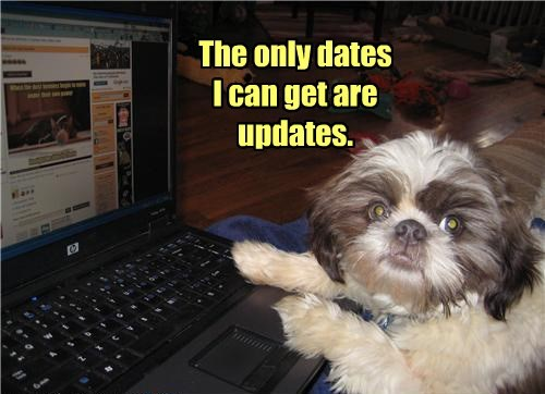 dogs only updates dates caption - 8542395648