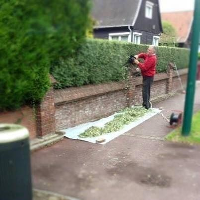 funny-memes-this-dude-just-rolling-fat-blunt-sidewalk