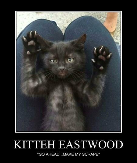 KITTEH EASTWOOD
