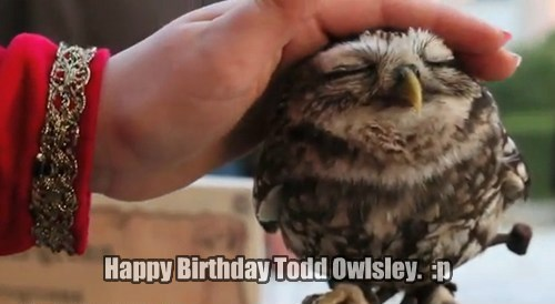 Happy Birthday Todd Owlsley. :p