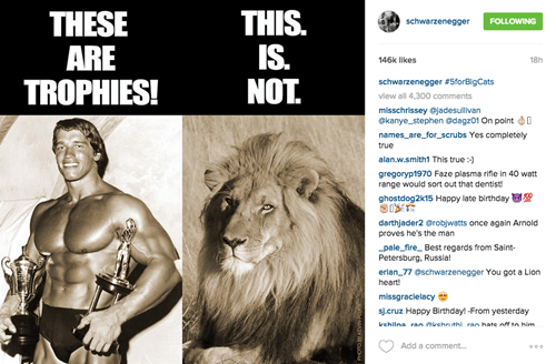 Arnold Schwarzenegger posts on Instagram to protest lion hunting.