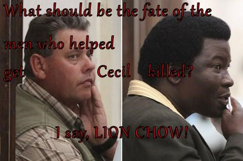 What should be the fate of the men who helped  get                 Cecil    killed? I say, LION CHOW!