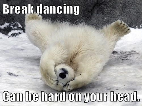 polar bear,breakdancing,funny,captions