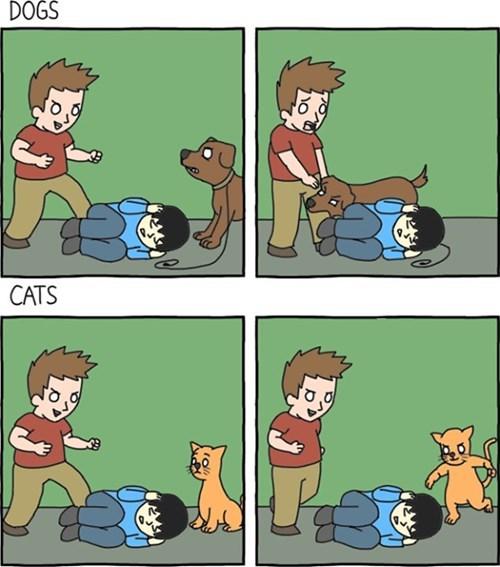 funny-web-comics-the-definitive-dogs-vs-cats-comic