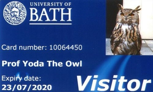 funny owl image This Owl Was Given His Own Library Card