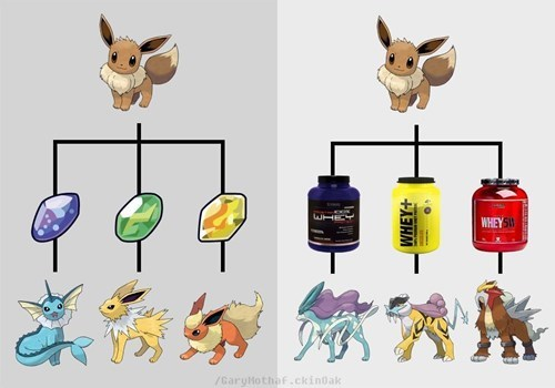 pokemon memes raikou entei suicine protein shake eeveelution