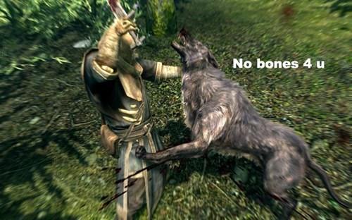Canidae - No bones 4 u