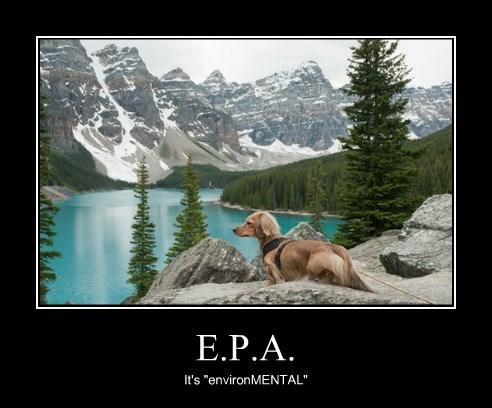 """E.P.A. It's """"environMENTAL"""""""