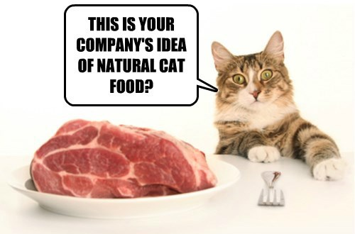 steak food caption Cats funny - 8547189504