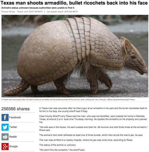 fails news texas man shoots armadillo bullet ricochets and hits him in the face