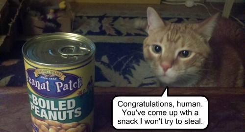 peanuts stealing snacks caption Cats funny - 8547829760