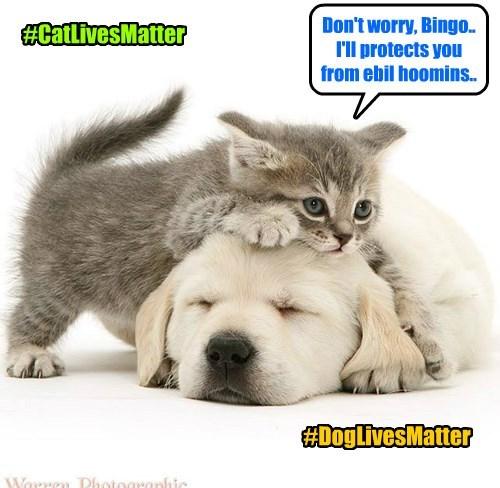 #AnimalLivesMatter
