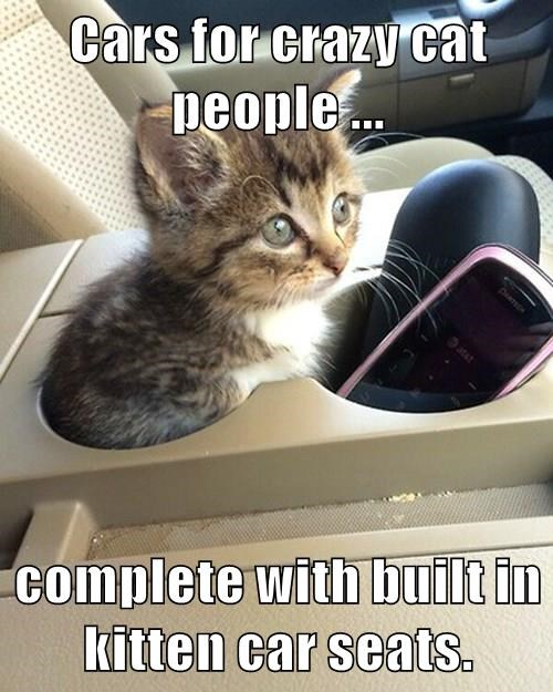 Cars For Crazy Cat People Complete With Built In Kitten Car