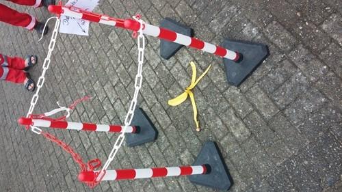 banana,trolling