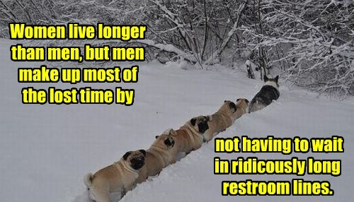dogs caption funny men vs women - 8548584960