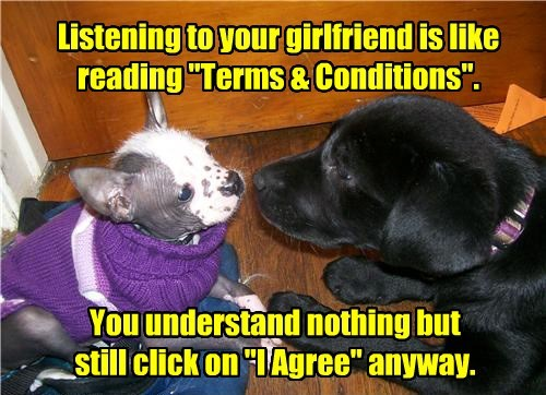 dogs agree terms and conditions caption funny - 8548592128