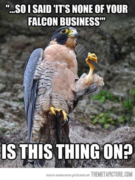Kamp Kuppy Kakes Talon show falcon comedian bomb