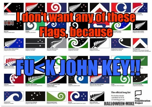 No New NZ Flag!