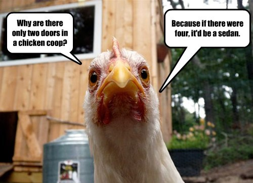 chicken cars joke captions - 8549772800