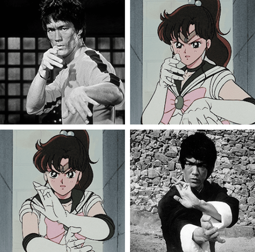 anime memes sailor jupiter bruce lee