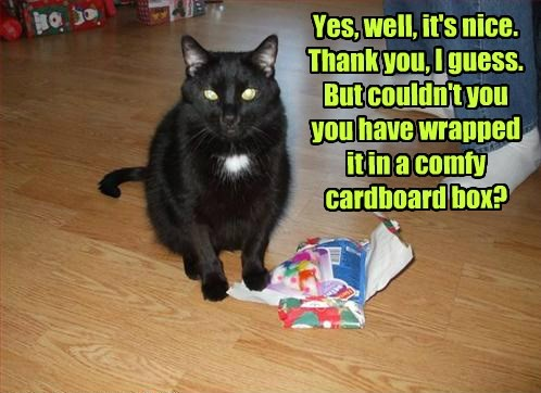 gifts box caption Cats funny - 8550508544
