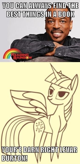 twilight sparkle,levar burton,books,reading rainbow