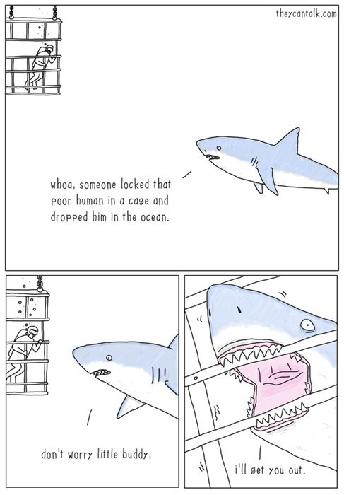 funny-web-comics-sharks-are-our-friends