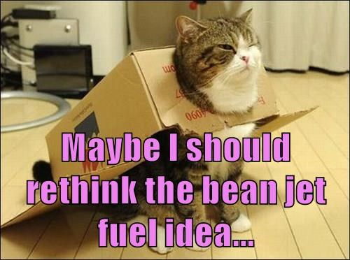Maybe I should rethink the bean jet fuel idea...