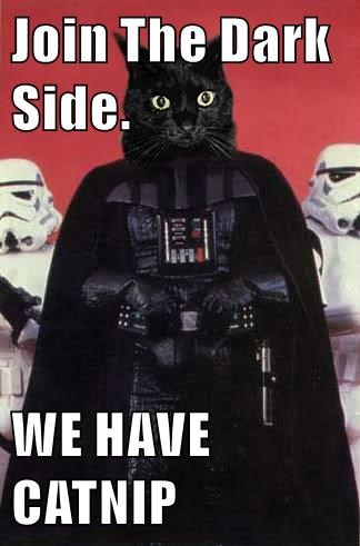 tv animals cat catnip dark side caption darth vader - 8551789568