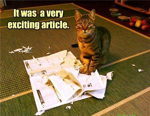 It had murder, suspense, and specials on tuna!