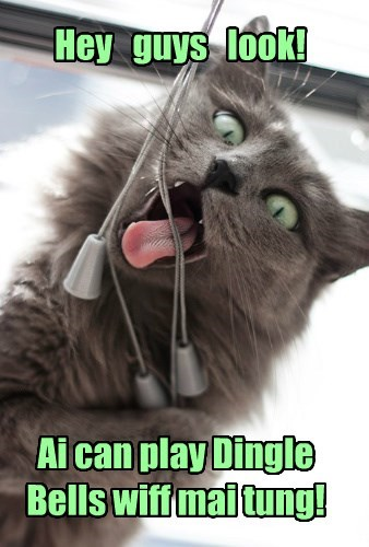 caption,Cats,funny