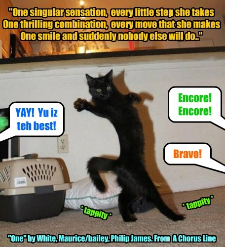 cat encore One Singular Sensation caption bravo - 8552602368